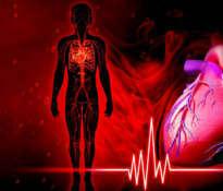 Zapobieganie chorobom sercowo-naczyniowym